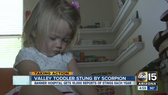 Valley_toddler_stung_by_scorpion__Sympto_2778560000_15994616_ver1.0_640_480